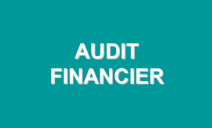 auditfinancier
